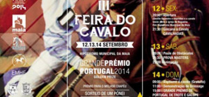 Feira do Cavalo na Maia recebe Grande Prémio Portugal de Trote e Galope