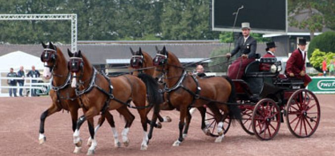 WEG 2014: Chester Weber and Dutch team are unsurpassed in driven dressage