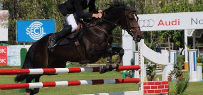 Critérios de Cavalos Novos: A criação nacional do Cavalo Português de Desporto em Alta!