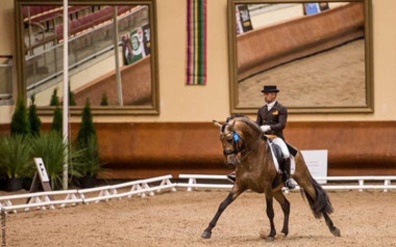 Carlos Pinto em 4º lugar: Nuno Chaveiro vice-campeão na final de 4 Anos em Saumur