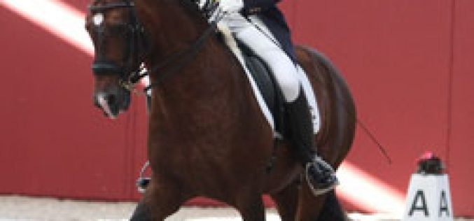Filipa Carneiro com Treinado ganha o Grande Prémio Kür com 73,33%