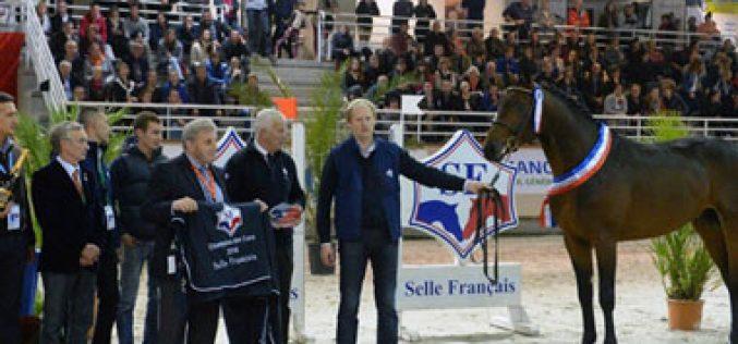 «Balko d'Elle» Campeão de França (VÍDEO)