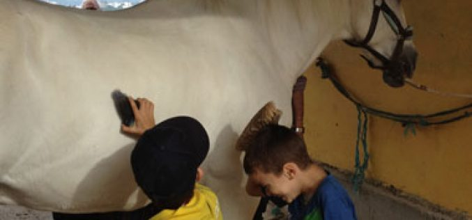 Cerca de meia centena de crianças, dos 5 aos 12 anos, vão ter oportunidade de experimentar a Equitação.
