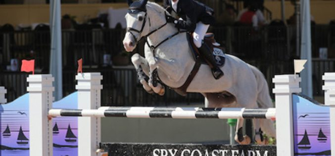 Darragh Kenny and Gatsby win the Speed Class in Wellington