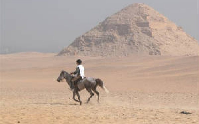 FEI removes UAE international Endurance events from official calendar