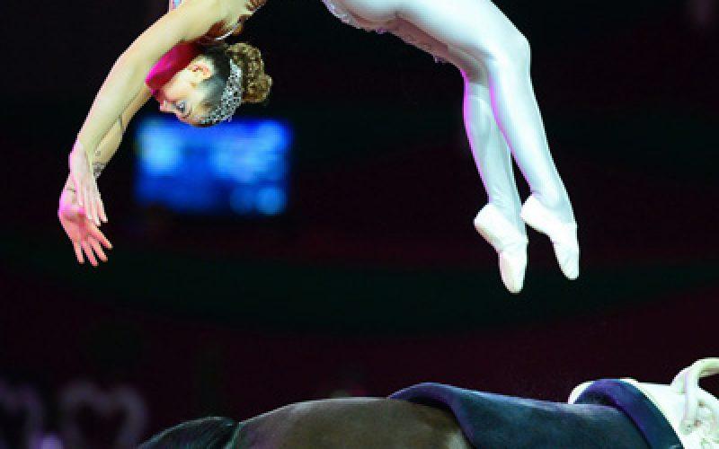FEI World Cup™ Vaulting Final 2014/15: backflip queen Lisa Wild on top