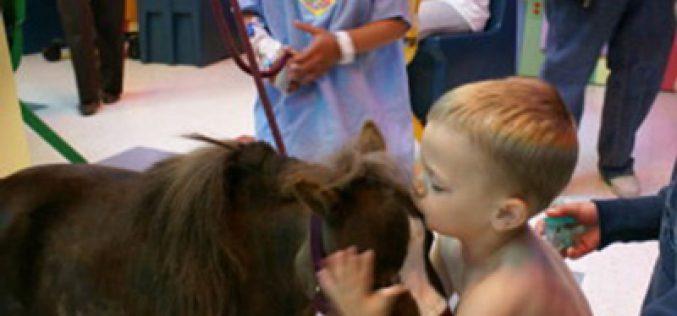 «Thumbelina» ajuda crianças hospitalizadas (VÍDEO)