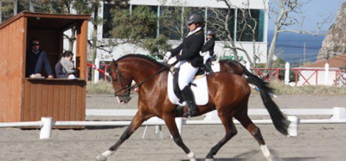 Açores – Dressage – Taça e Campeonato