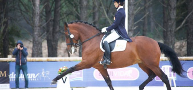 WDM continues in Munich and promises a great dressage experience