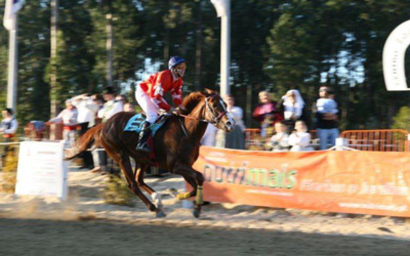 Corridas de Cavalos atraem Investidores Estrangeiros