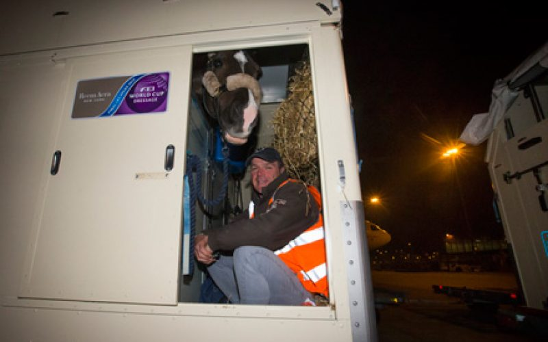«We give horses wings» – Vegas horse party takes to the air