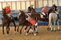 Quinta da Figueira e Cenycet garantem lugar no podium do Campeonato Nacional Sénior de Horseball