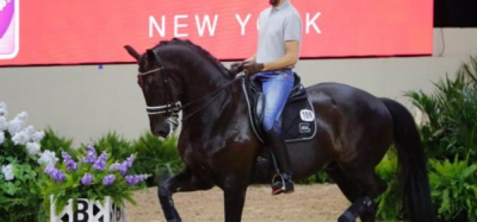 Dressage Schooling Session Draws Large Applause