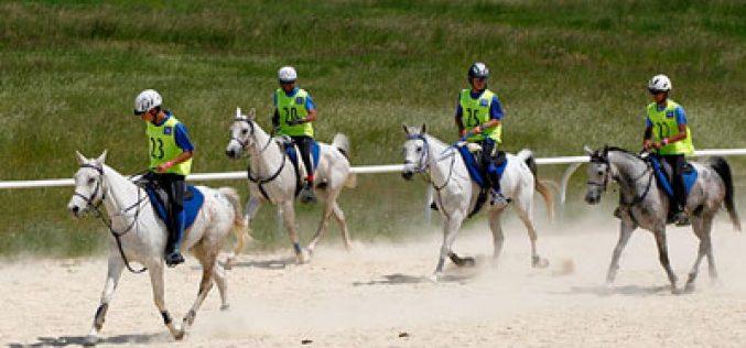 9 Cavaleiros pré-seleccionados para o Campeonato de Espanha de Raids de Jovens Cavaleiros 2015