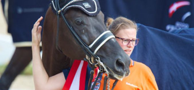 Stars behind the scenes – the life of the grooms