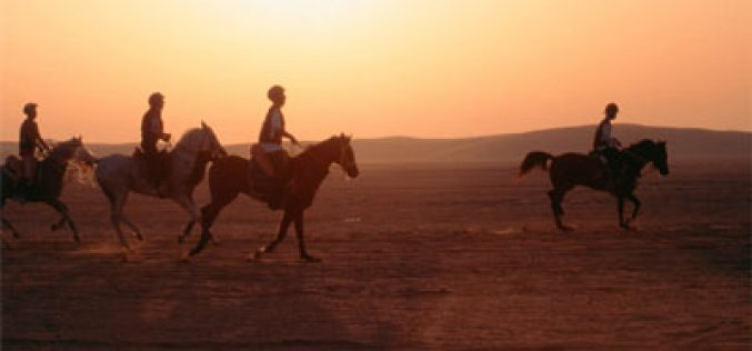 FEI meets with United Arab Emirates delegation on Endurance issues