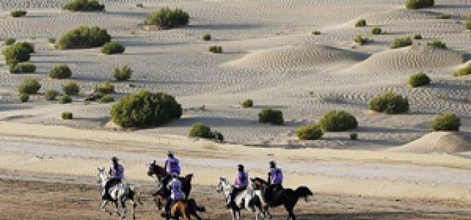 FEI mantém a suspensão provisória à Federação dos Emirados