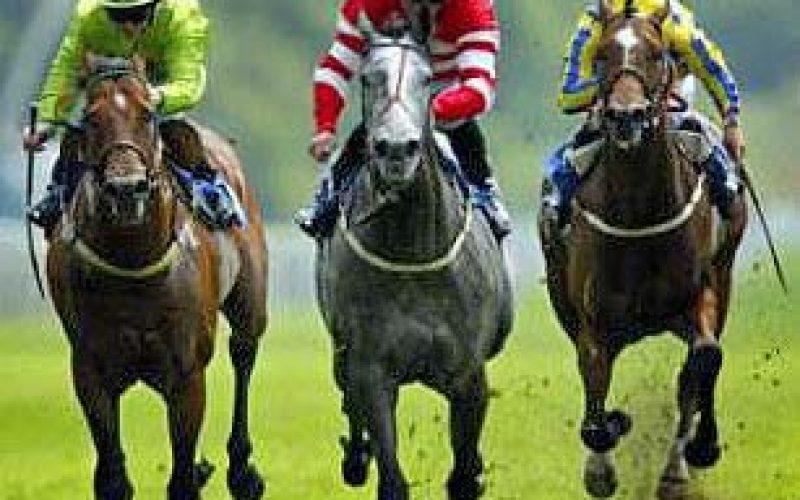 Serra de Carnaxide: hipódromo para apostas em cavalos