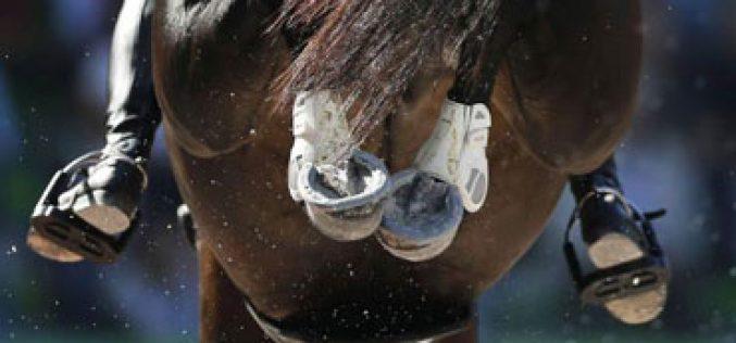 FEI suspende relações com a SportAccord