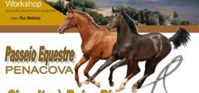 Passeio Equestre Penacova – Inscrições Abertas