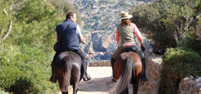 """Entidade Regional de Turismo prepara produto """"Turismo Equestre"""""""