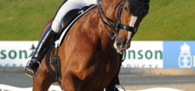Michael Eilberg and Woodland Farouche take centre stage at Bolesworth