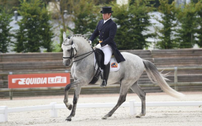 Bons resultados de Ricardo Wallenstein no CDI3* em Deauville