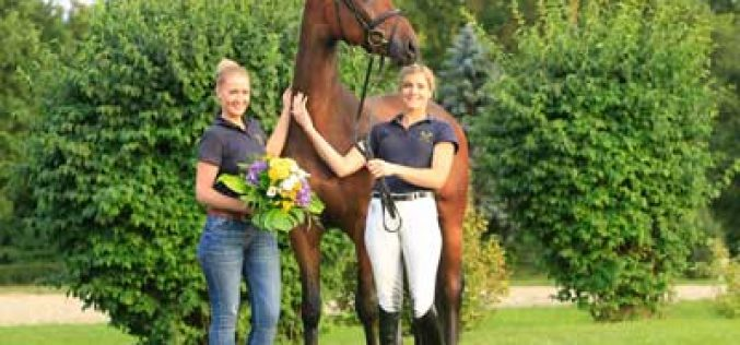 «Reminder» highest priced horse, sold to the Netherlands (VIDEO)
