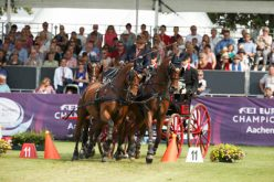 Aachen 2015: Felix Brasseur Brasseur at his best in Driving cones