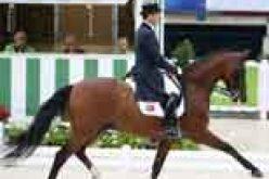Aachen 2015: Filipe Canelas  Pinto  – Grande Prémio – 67,543%
