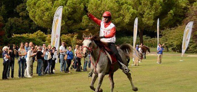 Cavalo Nacional «Descarado» Campeão do Mundo