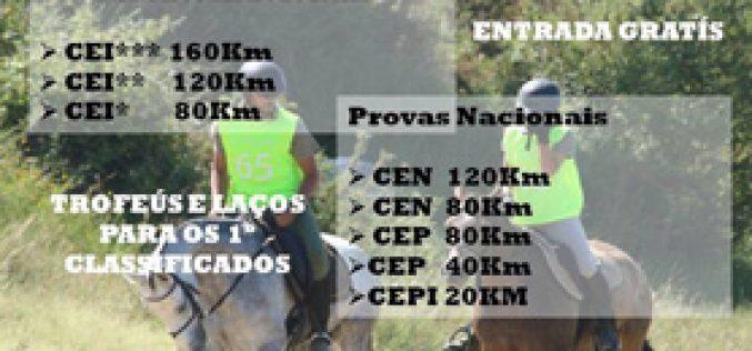 85 conjuntos inscritos no Internacional de Endurance de Rio Frio