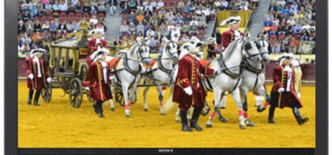 RTP1: Corrida de Gala à Antiga Portuguesa 2015