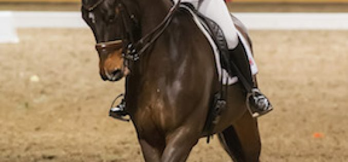 Belinda Trussell Tops $20,000 Invitational Dressage Cup