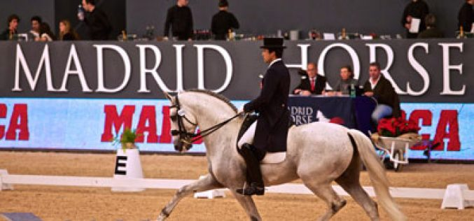 CDI3* Madrid: Manuel Borba Veiga supera 70% no G.P. Freestyle