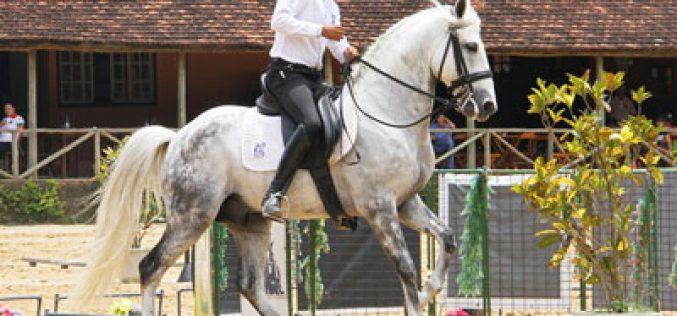 Brasil: Campeões do Campeonato de Equitação de Trabalho 2015
