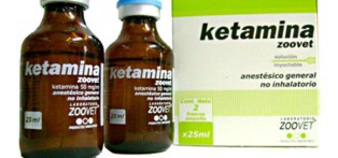 Ketamina – Uma preocupação para os veterinários