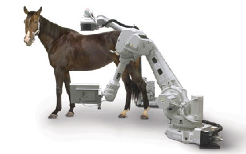 Dificuldades em fazer scanners de corpo inteiro a cavalos? Este robot dá uma ajuda