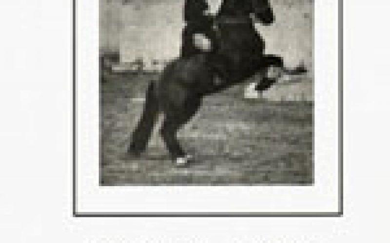Livro: Breves Notas Sobre uma Arte Apaixonante (A Equitação)