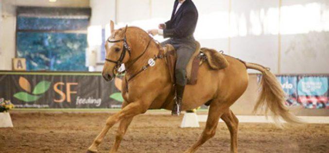Resultados: Iª Jornada do Campeonato Nacional de Equitação de Trabalho 2016