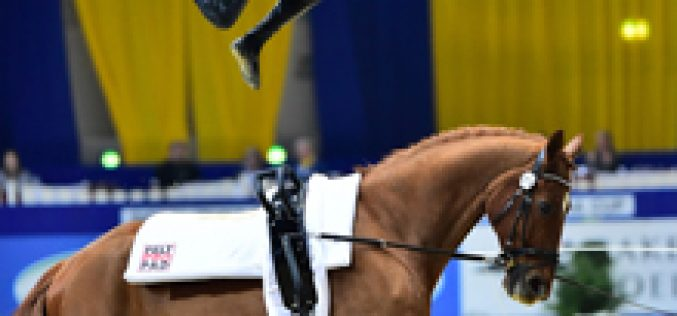 Jäiser, Kaiser, Engelberty and Jacobs take 2016 titles at dramatic FEI World Cup™ Vaulting Final