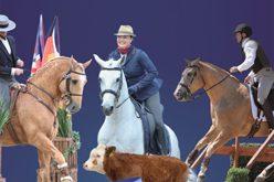 4 Conjuntos apurados para o Europeu de Equitação de Trabalho 2016