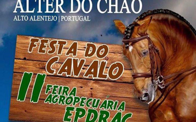 Alter do Chão: Festa do Cavalo anima vila alentejana durante quatro dias