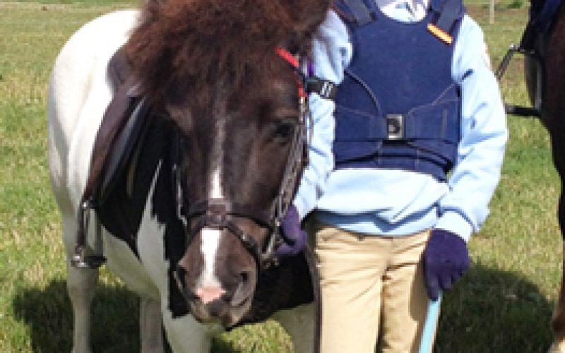 Coice de cavalo mata menina de 9 anos