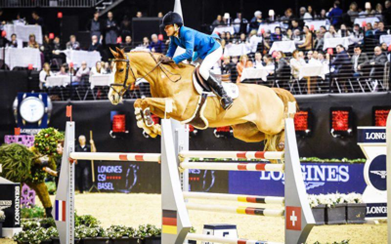 «Fit for Fun 13» no Top 10 dos cavalos mais ganhadores desde Janeiro 2016