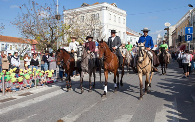 XVI Romaria a Cavalo Moita – Viana do Alentejo parte esta quarta-feira