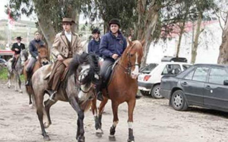 Seis dezenas de cavalos participaram no passeio do Carvalhal