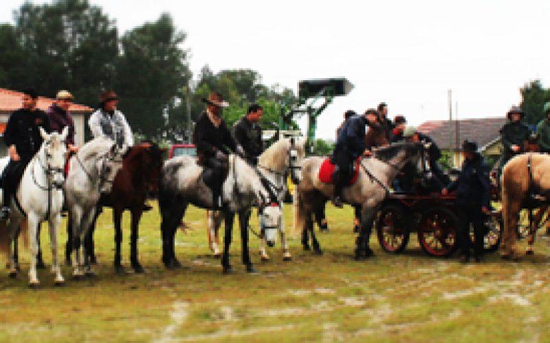 2º Encontro Equestre da Freguesia de Espinho