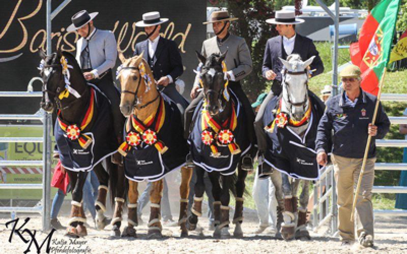 Munique: Portugal é Campeão da Europa de Equitação de Trabalho 2016