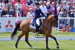 FEI Classics™: German duo steal early lead at Badminton